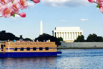 Cherry Blossom DC Cruise