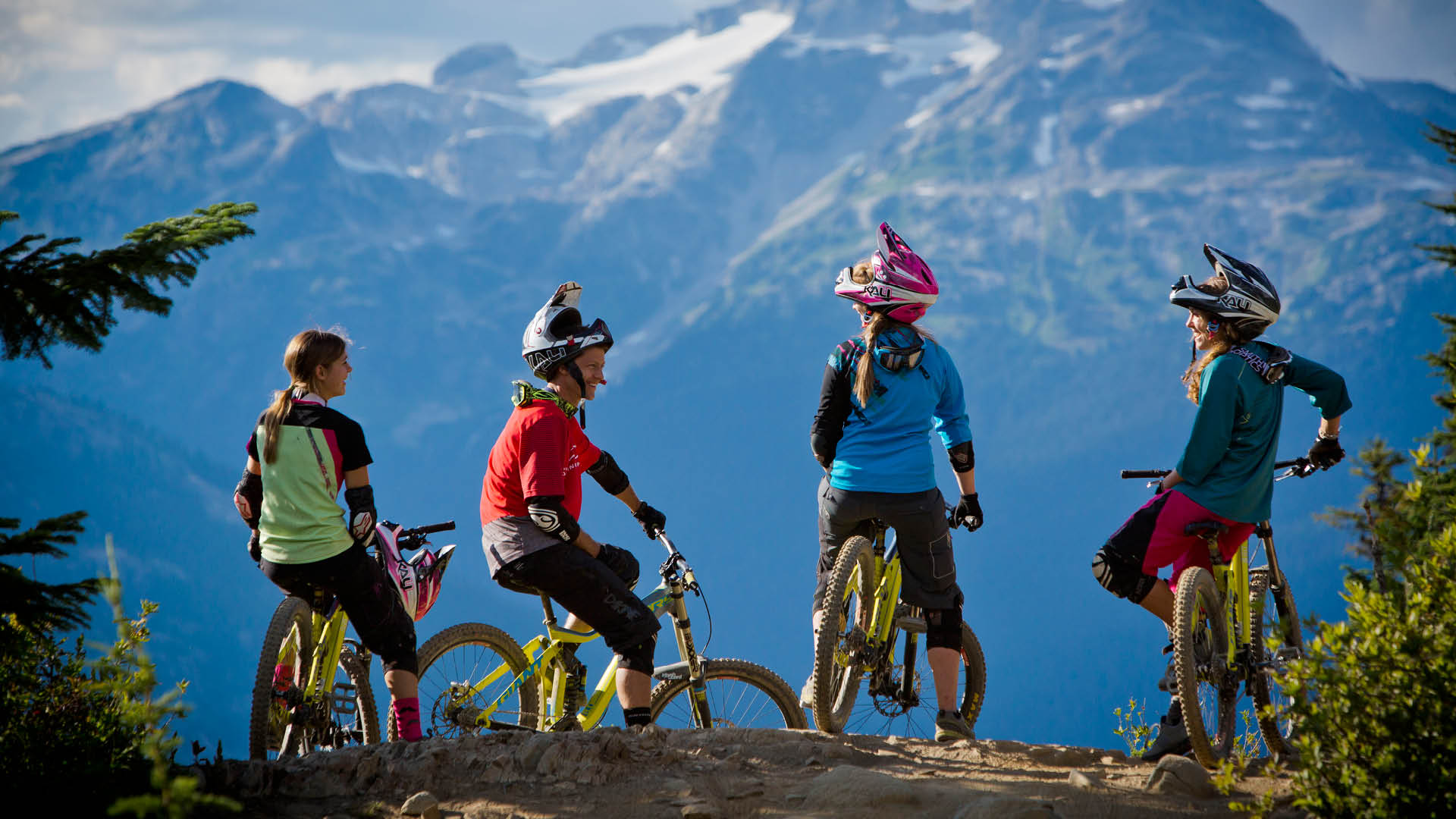Four mountain bikers, on a hill