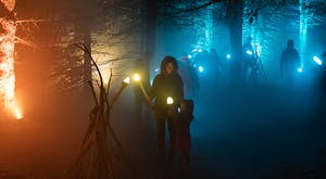 Families wandering through woods in fog