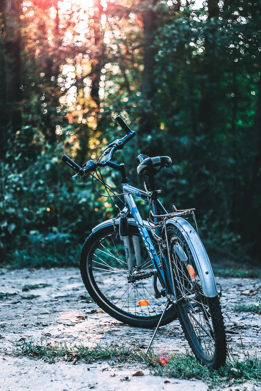 Bike standing on a trail