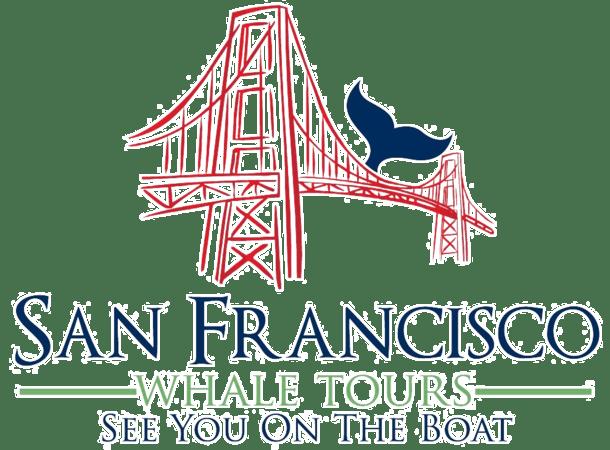 Home San Francisco Whale Tours
