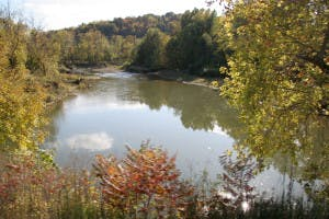 Fall Foliage with River