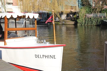 Delphine on the water