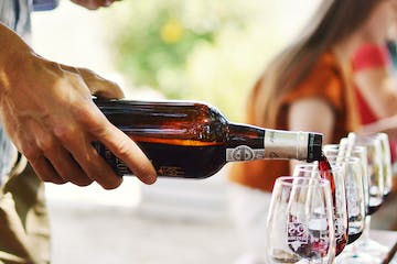 Douro Wine Tours and Tasting