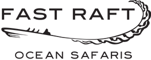 Fast Raft Ocean Safaris on Monterey Bay