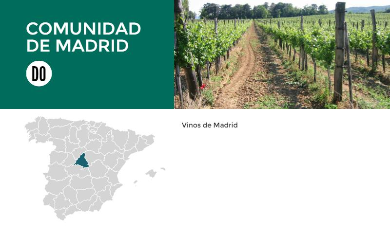 We continue our series by discovering the wines of Madrid!
