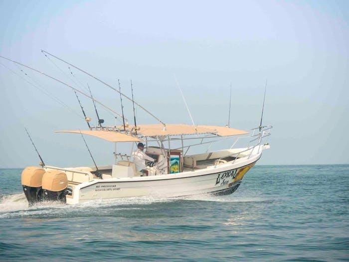33' Luxury Panga Boat Rental - Puerto Vallarta | Jet's ...