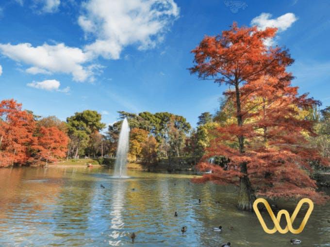 Parque del Retiro un respiro en Madrid
