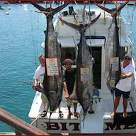Three fishermen show off the three marlins caught on this Bite Me fishing charter