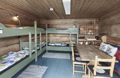 Mountain Cabin Room
