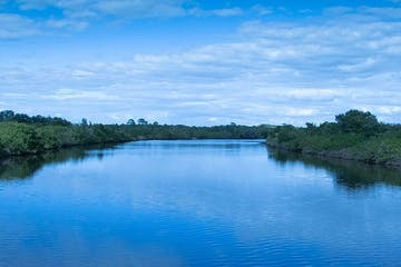 Braden River - blue water, green mangroves and blue skies