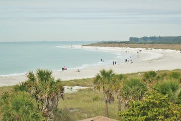 Florida Island beach with green vegetation, white sandy beaches and blue water