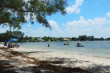 A group of people wading in the blue water of Palma Sola Bay in Bradenton Florida