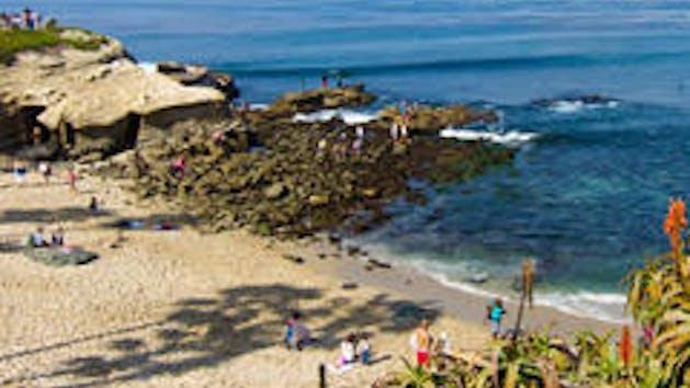 La Jolla San Go Beach The Best Beaches In World