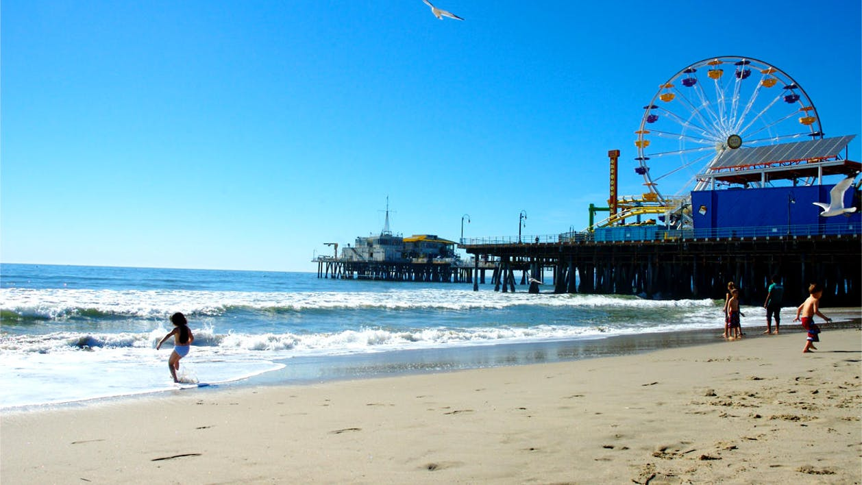 La City Tour Movie Star Homes Beaches