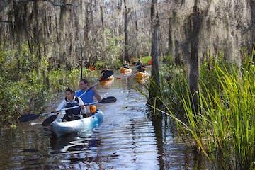 Manchac Mystic Wildlife Kayak Tour Image 2