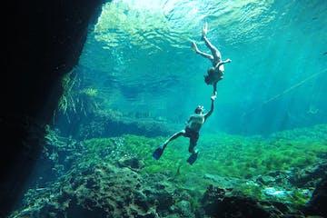 people snorkeling underwater