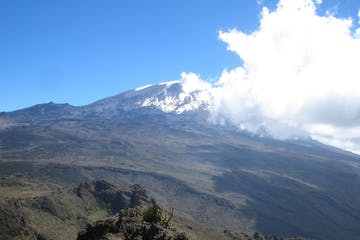 the lower slopes Kilimanjaro during a Kaf adventures guided tour