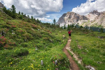 a hiker in a wildflower meadow beneath craggy mountains on a guided hiking tour