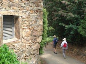tourists enjoy a hiking tour