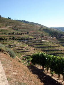 holidays to douro valley portugal