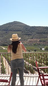 Self guided Wine Tour Porto to Douro