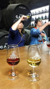 Tours de cata de vinos en Portugal