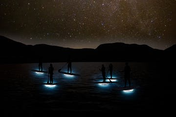 stars shining over a group of people stand up paddle boarding at night