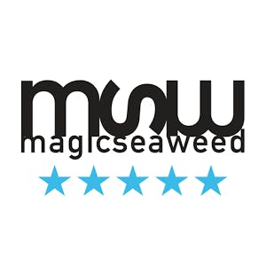 magic seaweed app logo