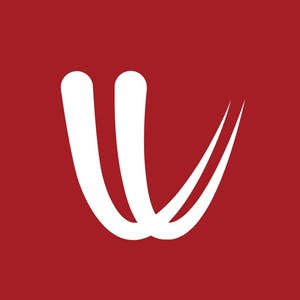 windy app logo