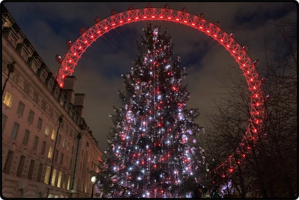 a christmas tree lit up at night
