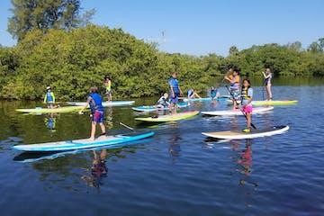 kids paddleboarding in Sarasota Florida