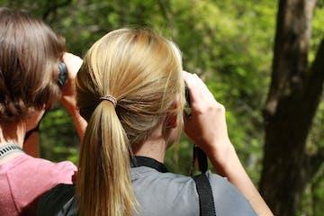 a woman birding