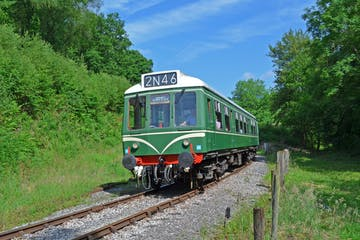 a train traveling through a lush green forest