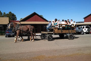 people on a wagon ride