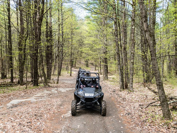 a rzr parked on a dirt path in a wooded area