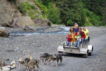 Dogsledding -- Seavey's IdidaRide