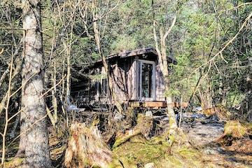 Lookout Cabin exterior