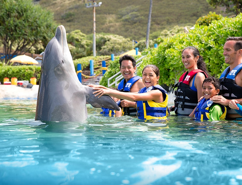 Liefestyle , action and thrill ride Photography for Palace Entertainment Amusement Parks Sea Life Park and Water Parks
