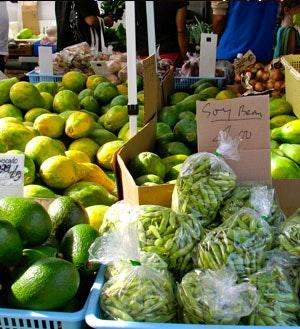 kcc-farmers-market-thumb