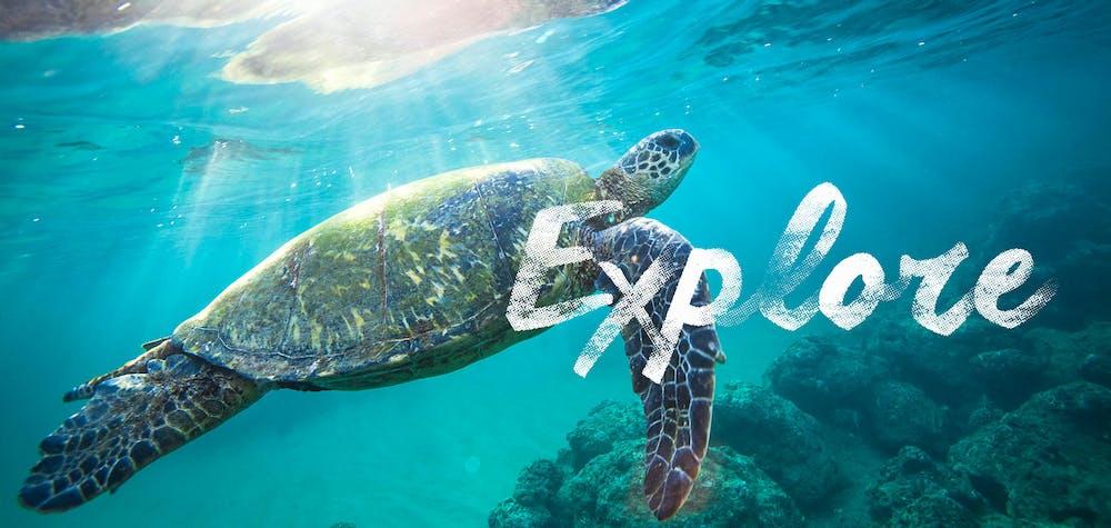 Kauai snorkeling locations