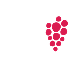 A Day on the Vine