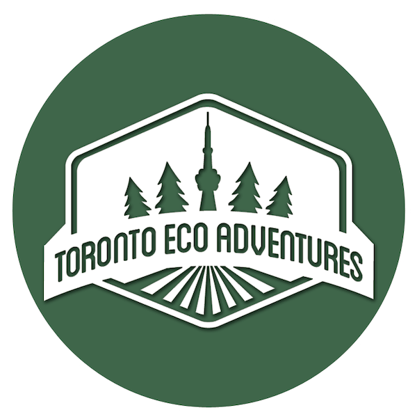 Toronto Eco Adventures logo