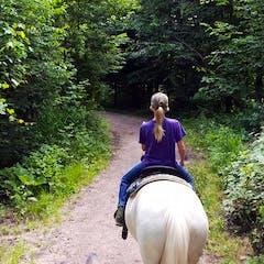 Horseback riding on woody trail