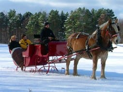 Couple in a sleigh