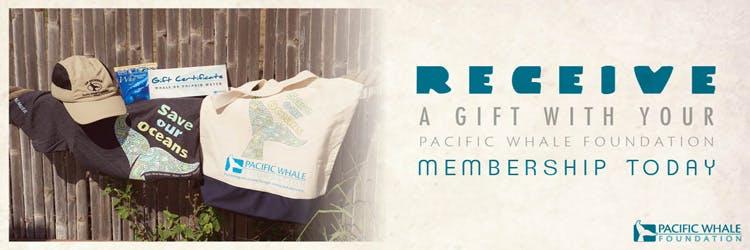 pacific-whale-membership