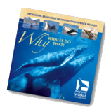 pacific-whale-welcome-gift-1