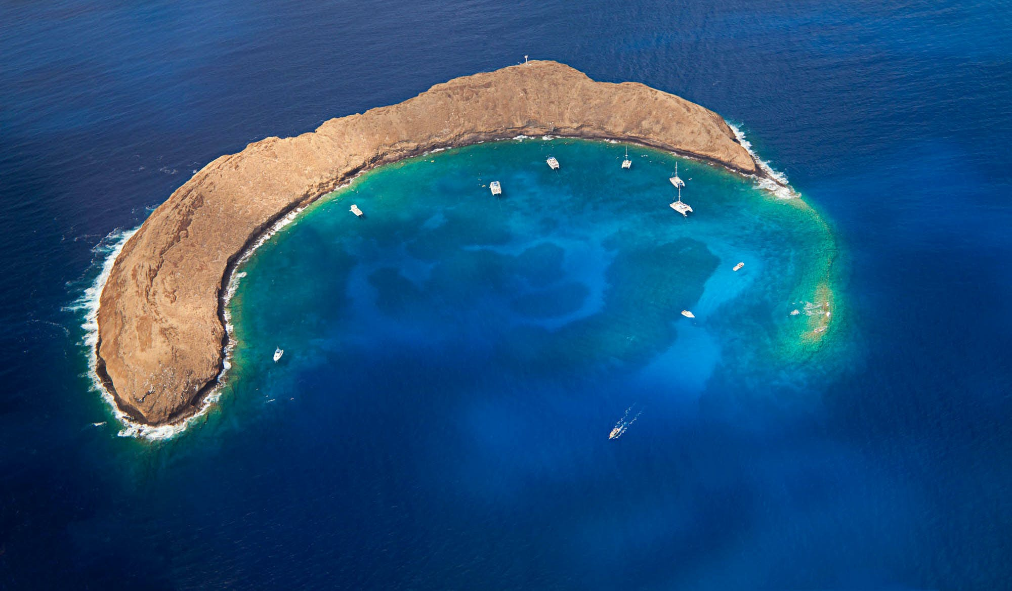 Product 7:00 Molokini / Turtle Arches (Maalaea)