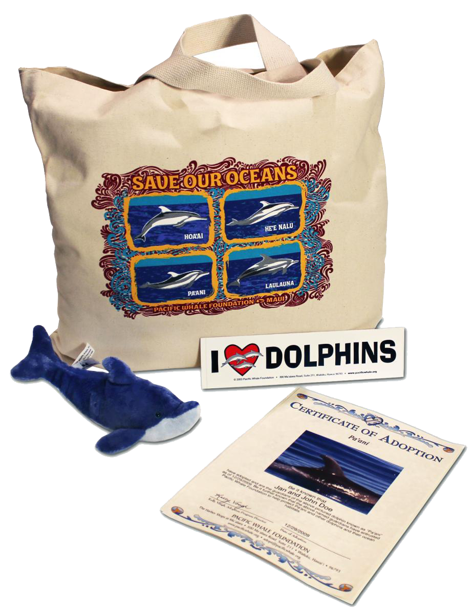 pacific-whale-adopt-a-dolphin