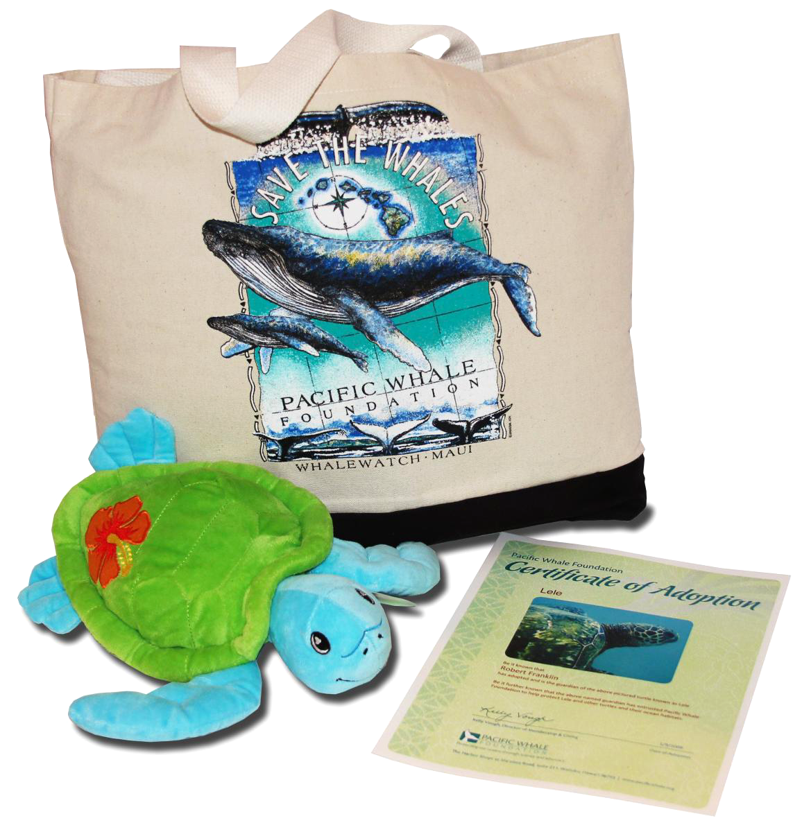 pacific-whale-adopt-turtle